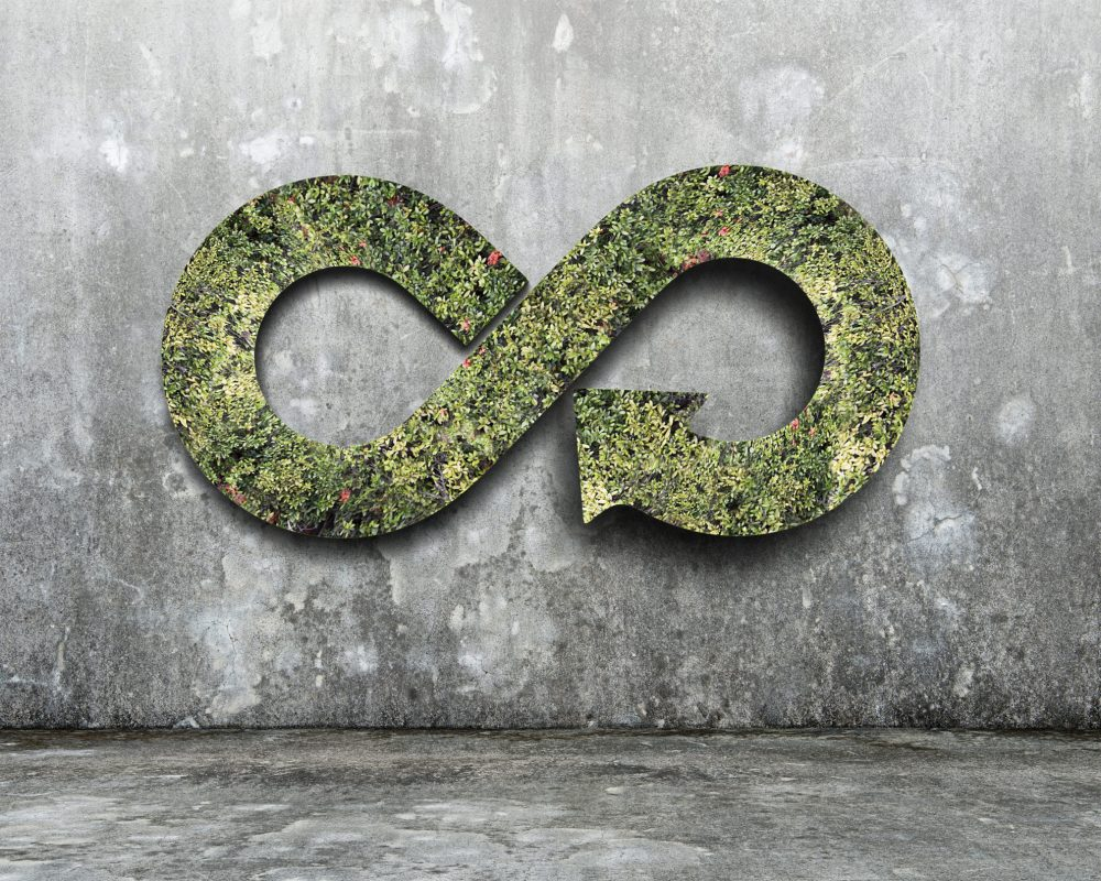 Green circular economy concept. Arrow infinity symbol with grass on concrete wall.
